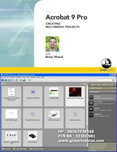 Lynda.com - Acrobat 9 Pro Creating Multimedia Projects