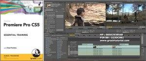 Lynda.com - Adobe Premiere Pro CS5 Essential Training