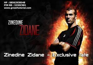 Zinedine Zidane - Exclusive fate (Dokumenter)