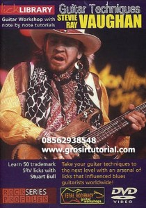 Lick Library   Stevie Ray Vaughan Guitar Techniques DVDRip