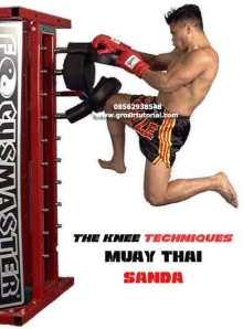 The-Knee-Techniques-of-Thai-Boxing-&-Sanda