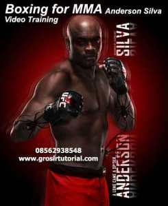 Boxing-for-MMA-DVD-with-Anderson-Silva