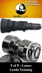 F-of-P---Lenses---Lynda-Training