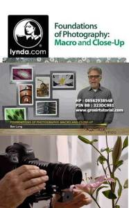 Jual-DVD-Video-Tutorial-Fotografi-Foundations-of-Photography-Macro-and-Close-Up---Lynda