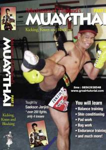Mechanics-of-Thailands-Muay-Thai