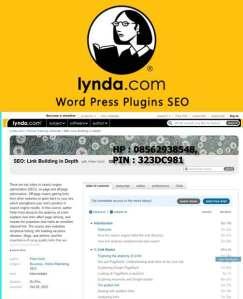 Lynda---WordPress-Plugins-SEO