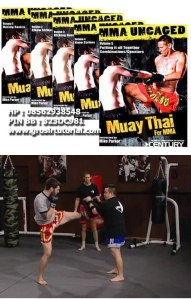 Mike-Parker---Muay-Thai-for-MMA-Volume-1-5